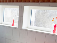 Featured Hopper Windows