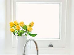 Featured Single Hung Windows