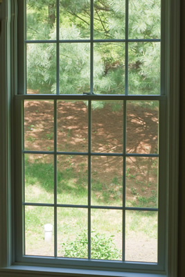 single hung windows picture
