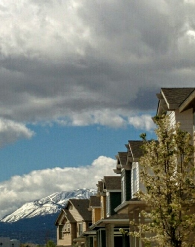 View of Mt Rose from a neighborhood
