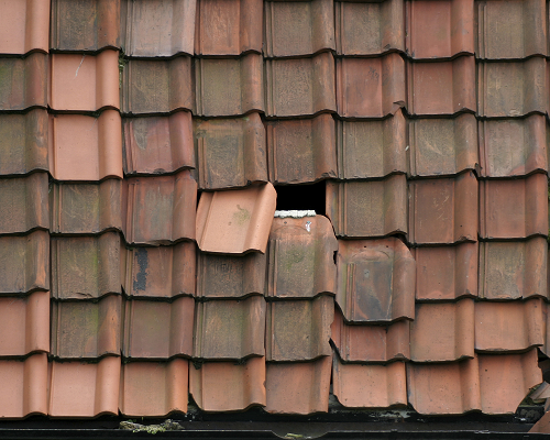 Broken shingles on a roof