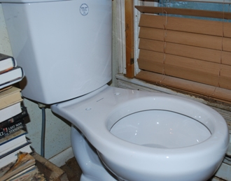 dual flush toilet assembled
