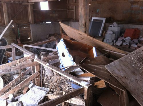 barn before cleanup