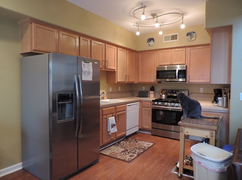 Mid range kitchen remodel quality touches on a budget for Mid range kitchen cabinets