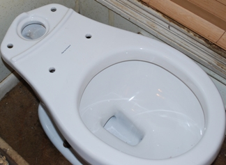 dual flush toilet bowl