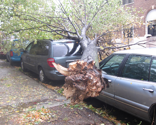 superstorm Sandy car damage