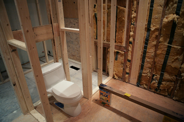 raw bathroom with insulation