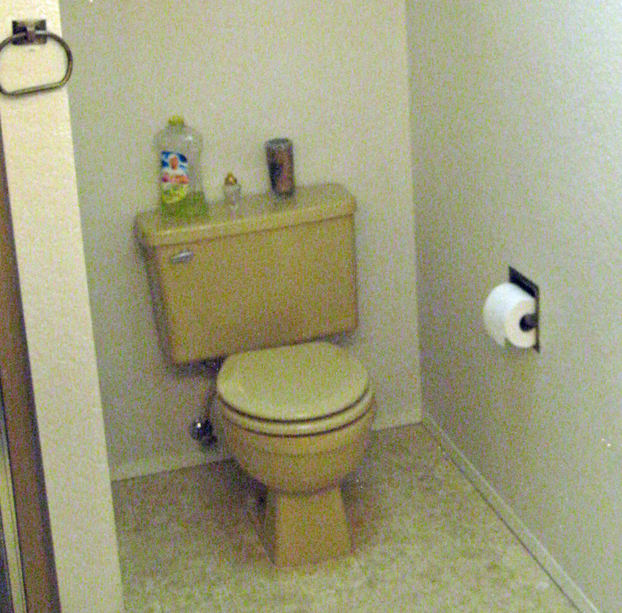 old toilet before removal